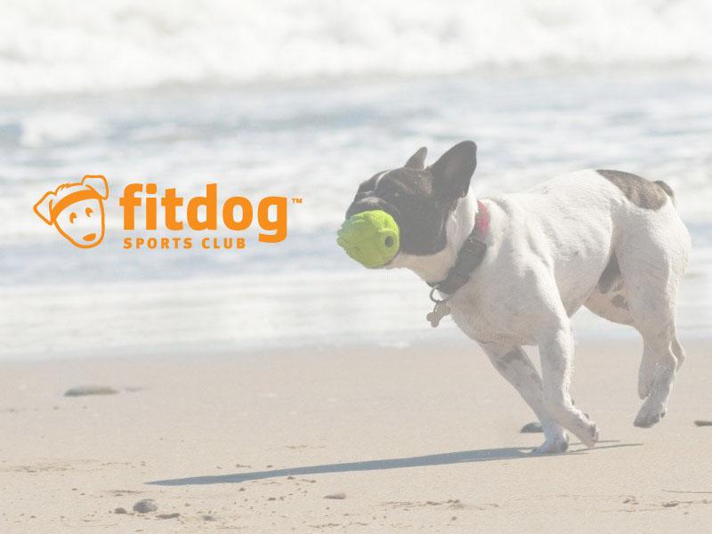 fitdogsportsclub-tm